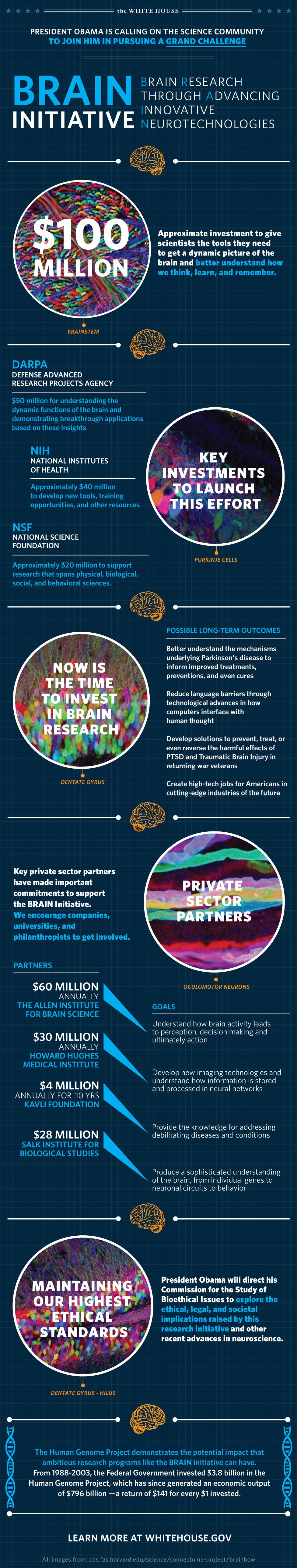 infografia iniciativa brain obama