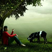 actitud consumo animal